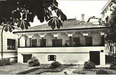 Casa memorială IL Caragiale Mansions, House Styles, Home Decor, Houses, Decoration Home, Manor Houses, Room Decor, Villas, Mansion