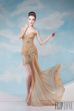 Tony Chaaya Spring-summer 2014 - Couture