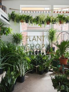 These 7 Awesome Plant Stores Will Help Up Your Interior Design Game - GQ Flower Shop Names, Flower Shop Decor, Flower Shop Design, Flower Shops, Interior Design Games, Interior Design Plants, Plant Design, Garden Cafe, Garden Shop