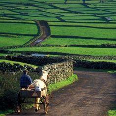 The Green Fields of Ireland.