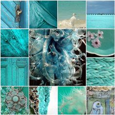 teals and greens