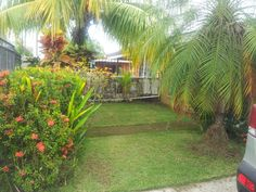 Front Yard Inside the beach house at Jaco for rent or for our Fratenity meetings, all like minded, busy people willing to pay a membership for getting mentor's help to make more money with our extra time