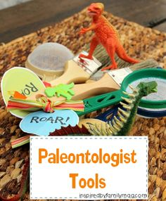 Excavation tools (sandbox filled with bones and dinosaurs)