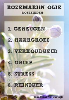 Healing Herbs, Natural Healing, Ayurveda, Herbal Oil, Aromatherapy Candles, Young Living Oils, Shampoo Bar, Diy Skin Care, Natural Medicine