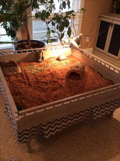 37 best tortoise table images tortoise house turtle habitat pets rh pinterest com