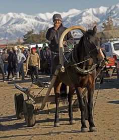 Horse Cart at the Horse Sheep Market in Karakol, Kyrgyzstan. Those are the Tian Shan Mountains in the background.