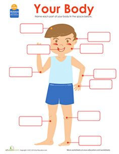 This cute worksheet asks your first grader to write down each part of the human body--encouraging research on life science and boosting his spelling ability!