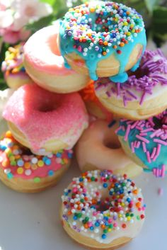 Minilicious Donuts | Simply Beautiful Eating