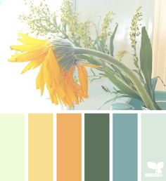 Trailer hues.  sunny tones - design seeds