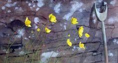Welsh Poppies by Jim Dunbar RWS