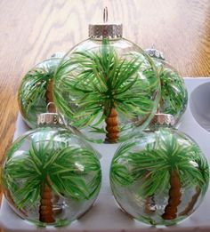 Adorable - actual tiny palm trees inside a clear Christmas ornament globe. Bring the palm tree indoors to your Christmas tree. Love this!