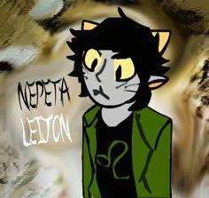 Nepeta Leijon