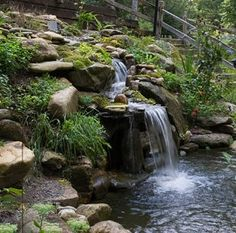 Strong falling water adds oxygen to the water for fish life. Koi are beautiful and eat the bugs that love to breed in still pools. DEEP pools with wide over hangs keep the Koi more protected from predators. Like curve of waterfall