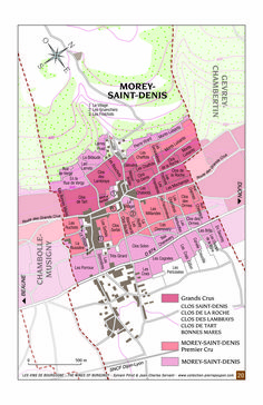 Morey-Saint-Denis, nestled between Gevrey-Chambertin and Chambolle-Musigny.