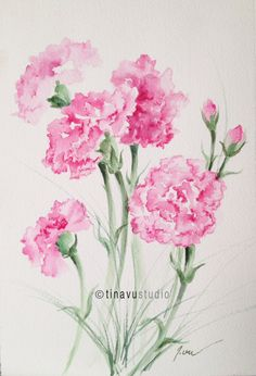 "January birthday flowers. Pink carnations. Original watercolor paintings. Original flowers. Floral watercolor. 7"" x 10"" by TinaVuStudio on Etsy https://www.etsy.com/listing/261892279/january-birthday-flowers-pink-carnations"