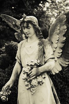Beautiful angel statue.