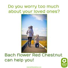 Do you worry too much about your loved ones? #RedChestnut #BachFlowerRemedies