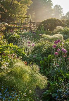 "Nicky Flint's photo ""Through the Garden"" was taken at a home in East Sussex, U.K. in the early morning hours when ""a gentle mist softened the light and created a magical atmosphere. Check out the 2018 International Garden Photographer of the Year winners."