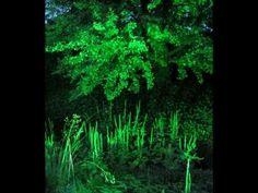 #Garten #der #Sinne #in #Merzig   #Garten #im #Licht.#mpg  #Saarland #Am 6. #August 2010 wurde #der #Garten #der #Sinne #in #Merzig #mit #Einbruch #der Dunkelheit  #zum #Garten #im #Licht. #Merzig #Saarland http://saar.city/?p=40490