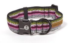 Dublin Dog Co. 06TSRNBL Eco-Lucks Rainbow Trout Collar * Learn more by visiting the image link.