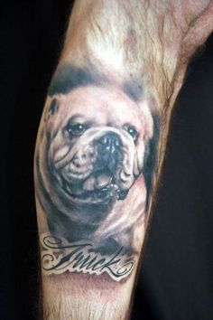 Superb Bulldog Tattoo Design