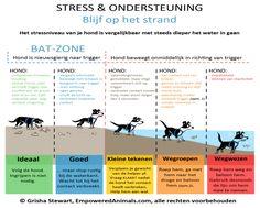 BAT - Stress en ondersteuning