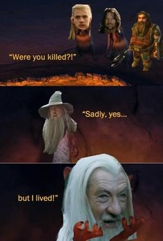 Applause for the perfect use of memes Movie Memes, Book Memes, Funny Movies, Hobbit Funny, O Hobbit, Earth Memes, Bagginshield, Jrr Tolkien, Tolkien Books