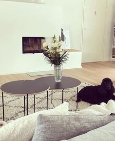 Light and spring vibes from 🌼 Mixrack tables, design Nordic Lights, Living Room Inspiration, Finland, Showroom, Tables, Interior Design, Spring, Furniture, Instagram