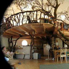 Amazing Tree House Design