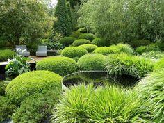 contemporary evergreen garden