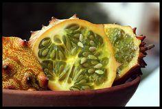 Exotic fruit: KINO or KIWANO