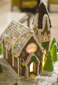 36 best gingerbread house cookies or 2d flat stanley images ginger rh pinterest com