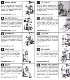 weider pro 6900 exercise chart  healthy life  gym
