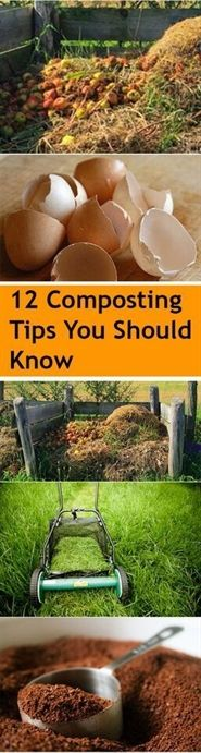 Want to make better and healthier soil for your plants and garden but don't know how? Lots of people spend large sums of money to buy top-notch soil and state-of-the-art gardening equipment, but…MoreMore #GardeningTips