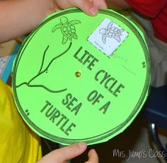 Mrs Jump's class: Teaching with Informational Texts: Close Reading Lessons for One Tiny Turtle