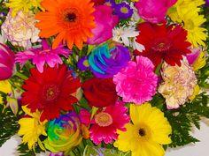 Flowers - net pic
