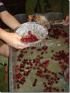 cranberry & water sensory table: not sure if this would be possible...