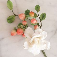 *New* Boutonnière Workshop May 1-3.  Three boutonnières featuring gardenia, hypericum, freesia, succulent, porcelain berries, lamb's ear.  Excited to combine lots of new content with (not so scary) guided arrangement.  Info@maggieaustincake.com for details!
