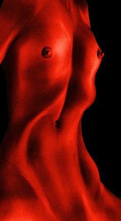 Ventre rosso
