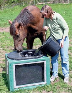 A description of a field trial using a solar water trough during the winter for horses. Horse Shelter, Animal Shelter, Horse Stalls, Horse Barns, Horse Feeder, Horses And Dogs, Mini Horses, Horse Paddock, Horse Treats