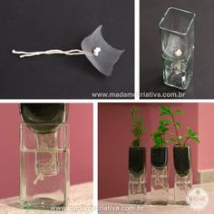 Bottle Garden, Diy Bottle, Glass Garden, Diy Craft Projects, Diy And Crafts, Self Watering Plants, Wire Tree Sculpture, Idee Diy, Recycled Bottles
