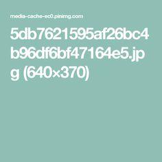 5db7621595af26bc4b96df6bf47164e5.jpg (640×370)