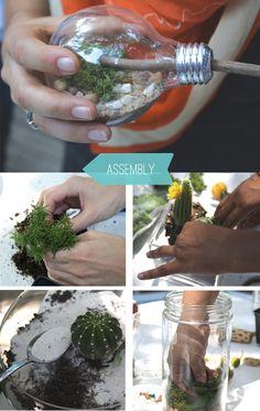 These are SO much fun - DIY unique terrarium - Compost Rules. Light Bulb Terrarium, Mini Terrarium, Succulent Terrarium, Terrariums, Terranium Ideas, Terraria Tips, Little Gardens, Indoor Plants, House Plants