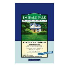 Lebanon Seaboard Corporation Emerald Park No.3 Kentucky Bluegrass * Review more details here : Gardening DIY