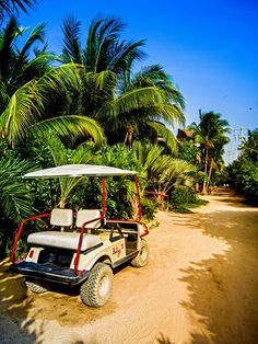 Isla Holbox Mexico located on the Gulf of Mexico next to the Caribbean Sea. No paved roads, No cars allowed. Only means of transportation are golf carts, bicycles or your feet. Everything is within walking distance. Impossible not to relax in this quaint and beautiful island.