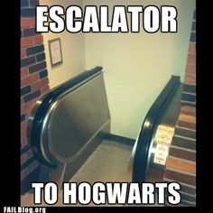 For those of us who have wondered if there are moving escalators to go with all of those moving stairs. No wonder all of the wizards are skinny.