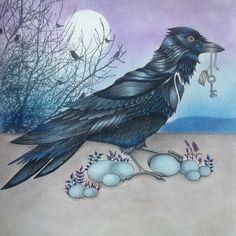 Pássaro lindo do livro Jardim Secreto