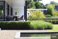 Contemporary Garden Design, Contemporary Landscape, Landscape Design, Outdoor Garden Lighting, Outdoor Gardens, Modern Landscaping, Front Yard Landscaping, Casa San Sebastian, Outdoor Rooms