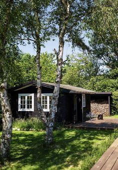 inside of a log cabin, scandinavian interior design, black and white,