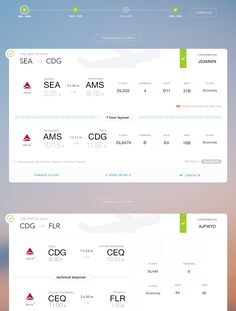 Dribbble - flight_summary.jpg by Jered Odegard